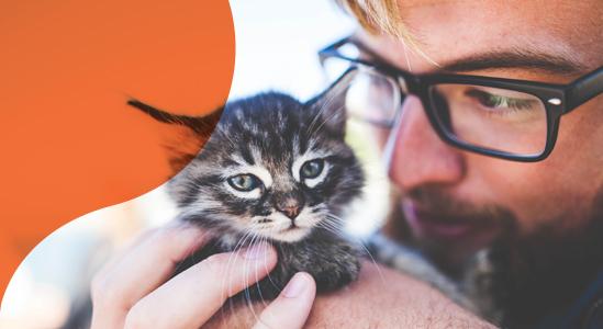 Image of Man holding Kitten