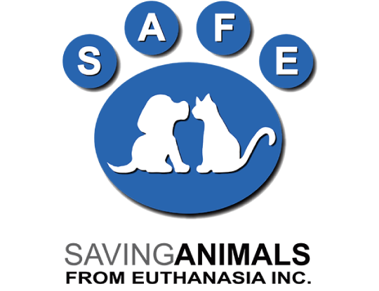 Saving Animals From Euthanasia Inc