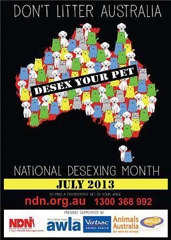 Image of Desexing Poster